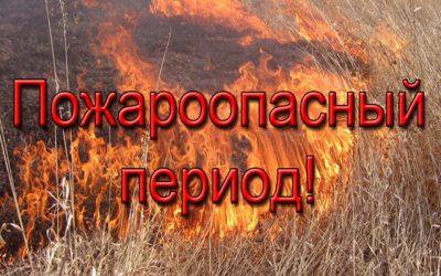 Несложные правила пожарной безопасности в лесах